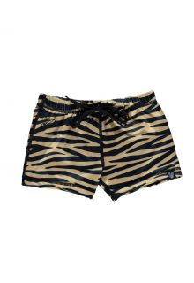 Beach-&-Bandits---UV-Swim-shorts-for-kids---Tiger-Shark---Cake